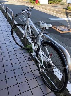 IMG_8205.jpg